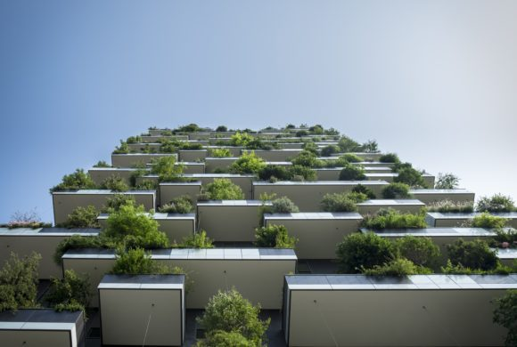 Nuovo codice appalti: le certificazioni ambientali diventano strategiche per le imprese
